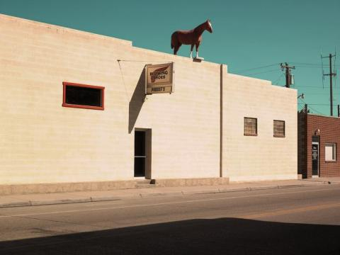 Horse on the Roof